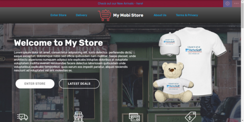 MyStore System Template for V4